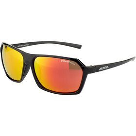 Alpina Finety Glasses black-black matt